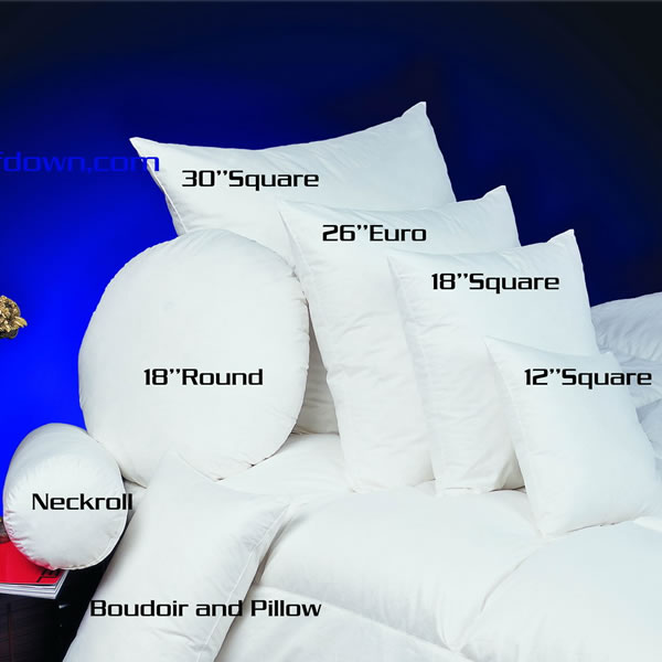 All Kinds of Pillow Insert